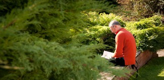 Méditation du mois